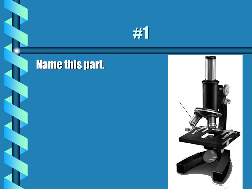 Quiz Time. With your partner, test each other on the following parts of a microscope.