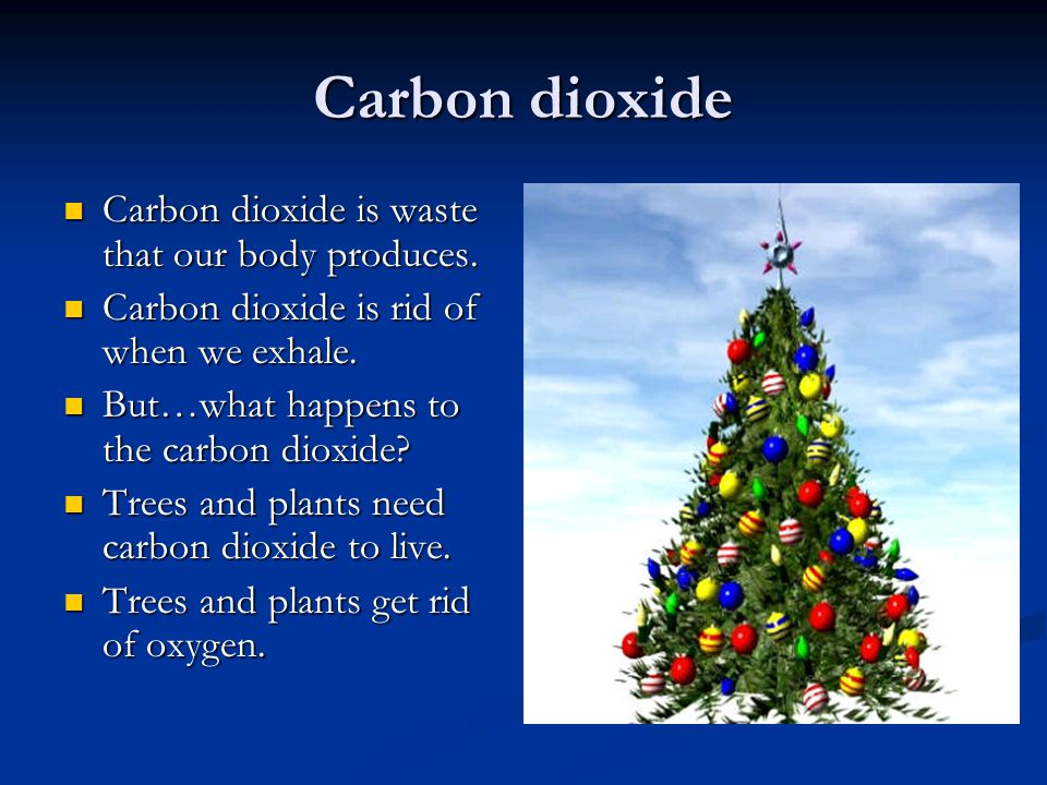 Oxygen and Carbon Dioxide Our body needs oxygen. Our body needs oxygen.