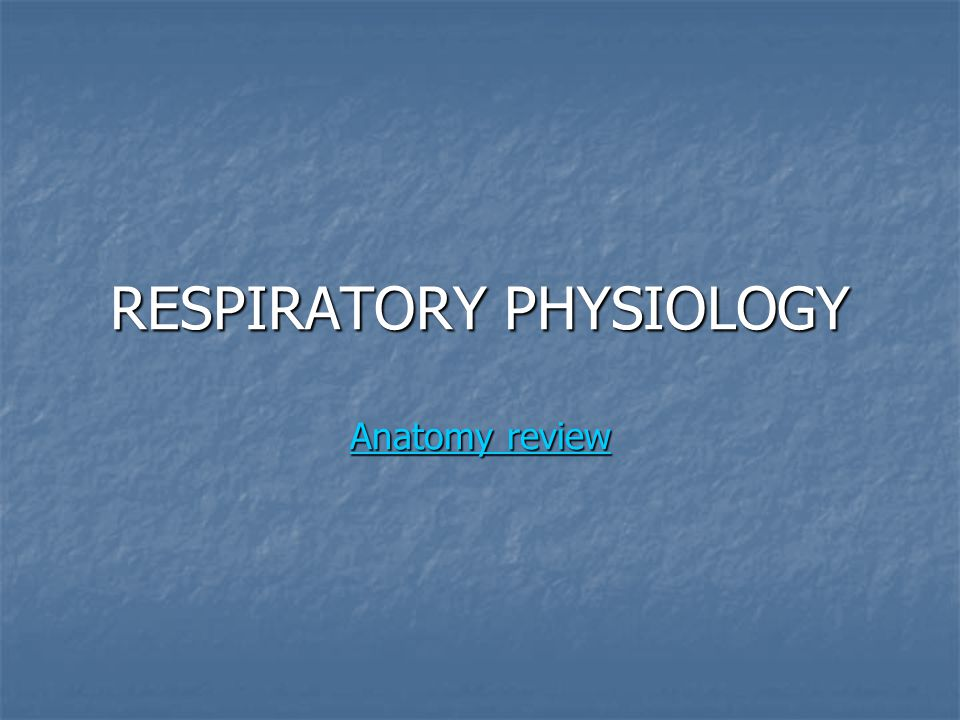 RESPIRATORY PHYSIOLOGY Anatomy review Anatomy review Anatomy review
