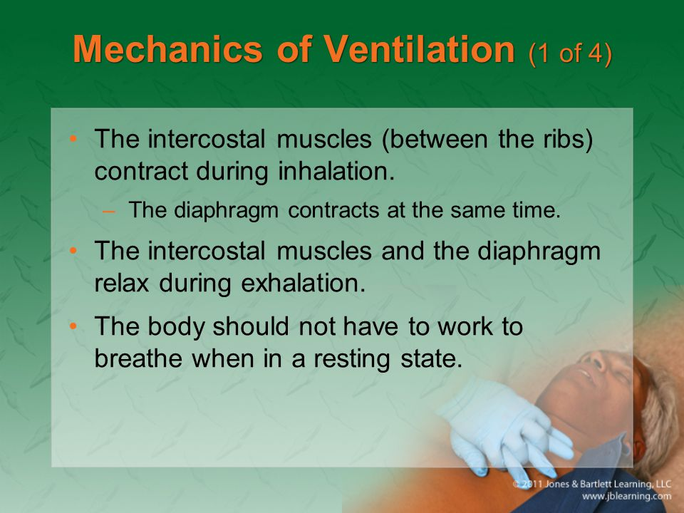 Hemothorax (1 of 3) Blood collects in the pleural space from bleeding around the rib cage or from a lung or great vessel.