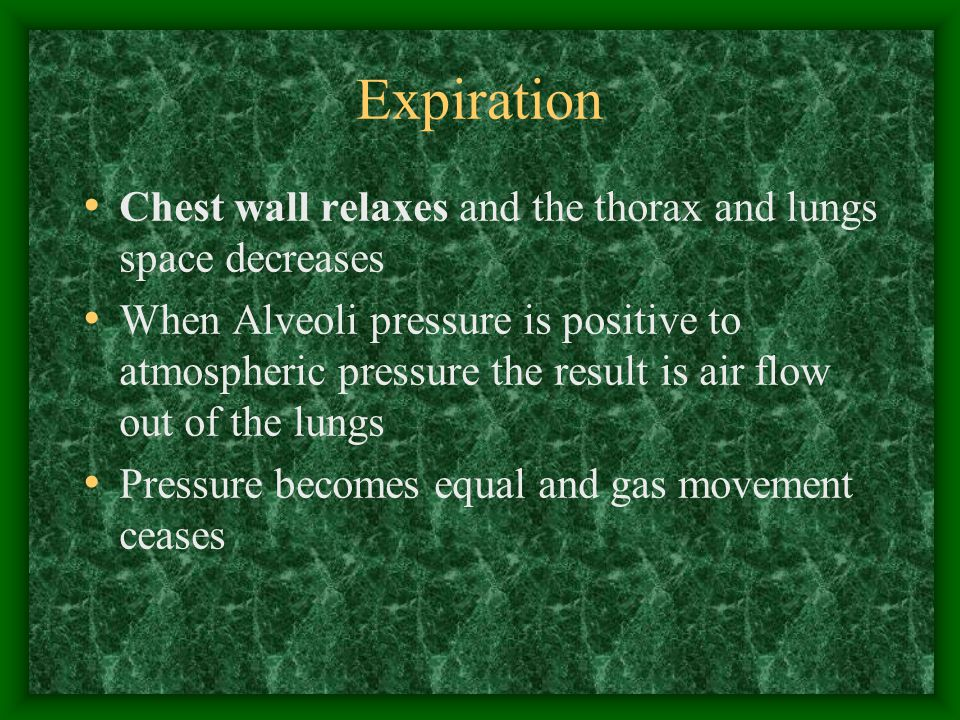 Expiration Chest wall relaxes and the thorax and lungs space decreases When Alveoli pressure is positive to atmospheric pressure the result is air flow out of the lungs Pressure becomes equal and gas movement ceases