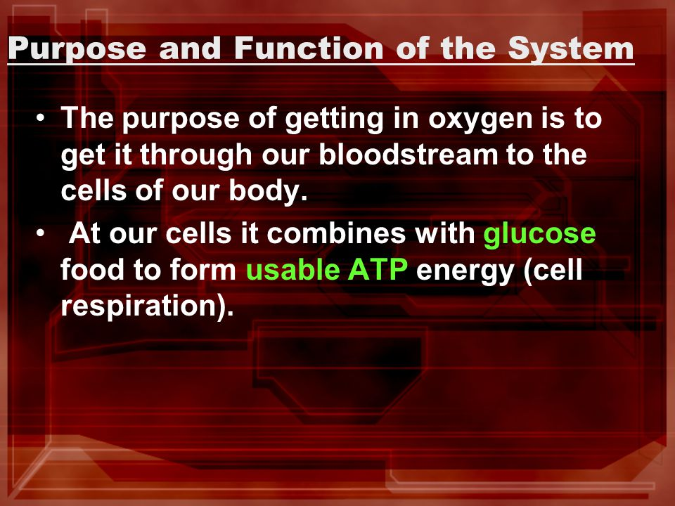 Purpose and Function of the System The purpose of getting in oxygen is to get it through our bloodstream to the cells of our body.