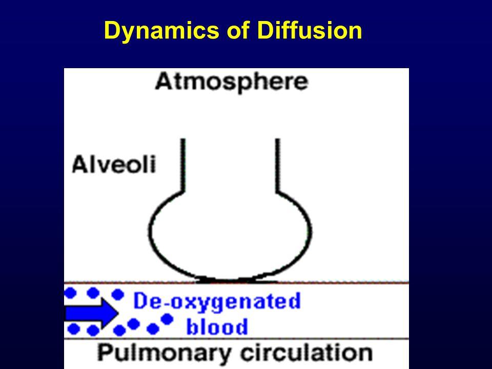 Dynamics of Diffusion