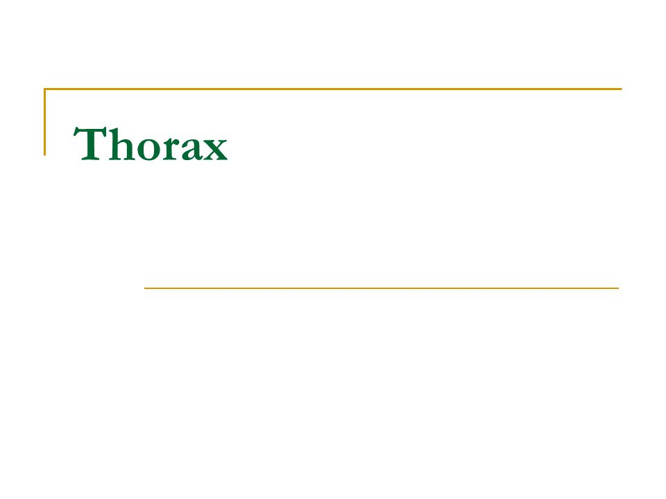 Internal thoracic vessels Internal thoracic a.&v. Parasternal ln. Endothoracic fascia