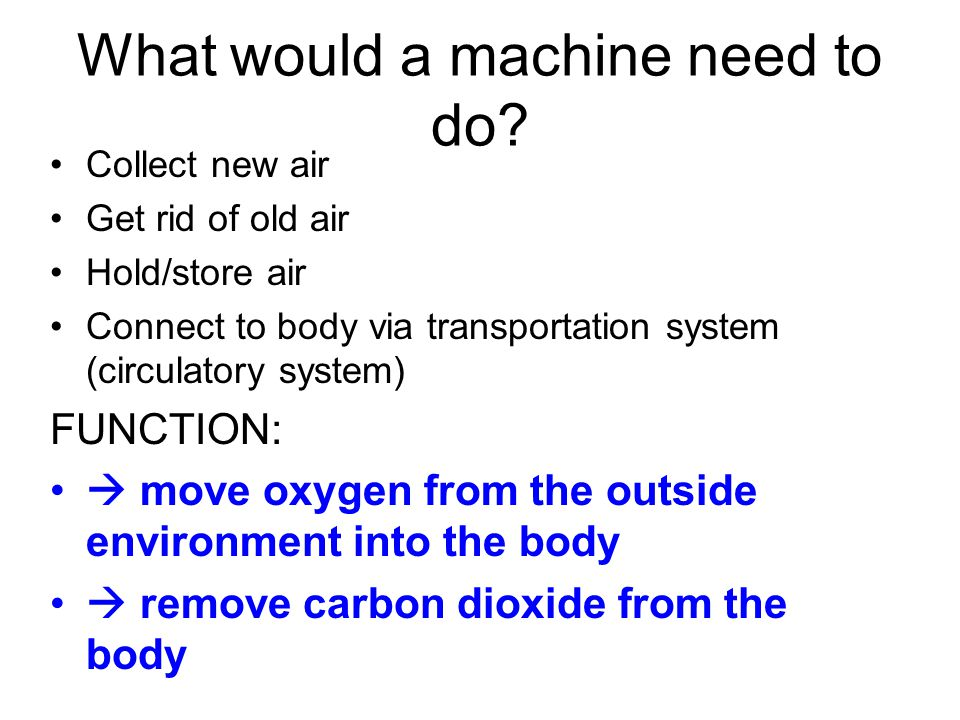 PURPOSE OF RESPIRATION If you were to design an efficient breathing system, what would the requirements be