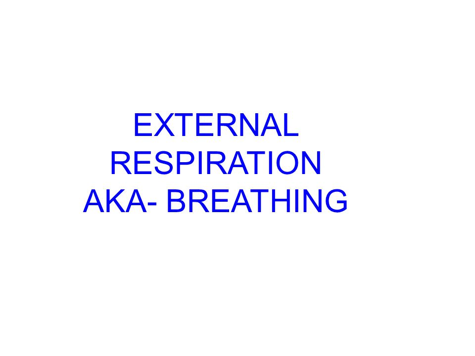 RESPIRATION External= breathing Internal Between environment and lungs Between blood and cell http://activity.ntsec.gov.tw/lifeworld/english/content/body_cc4.html