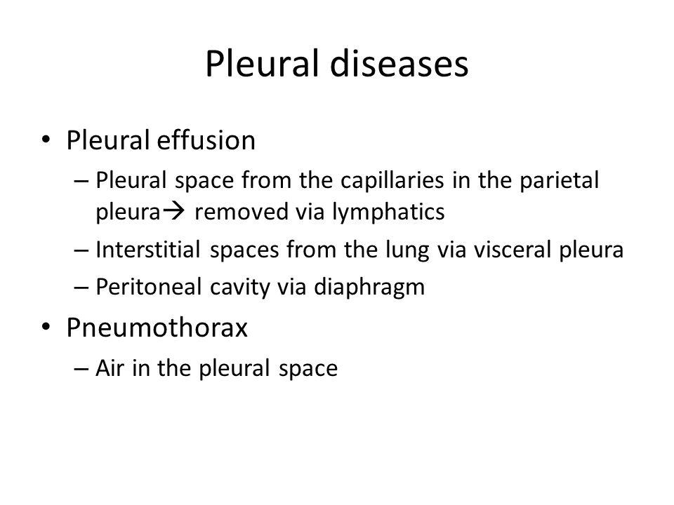 Pleural diseases Pleural effusion – Pleural space from the capillaries in the parietal pleura  removed via lymphatics – Interstitial spaces from the