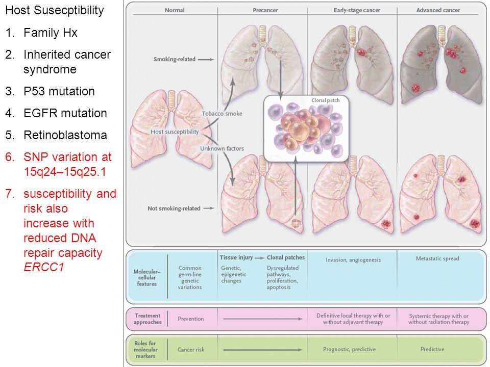 Host Susecptibility 1.Family Hx 2.Inherited cancer syndrome 3.P53 mutation 4.EGFR mutation 5.Retinoblastoma 6.SNP variation at 15q24–15q25.1 7.suscept