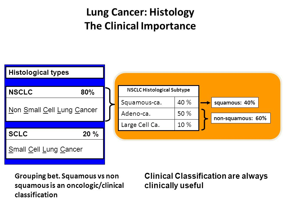 Lung Cancer: Histology The Clinical Importance Histological types NSCLC80% Non Small Cell Lung Cancer SCLC 20 % Small Cell Lung Cancer 10 %Large Cell
