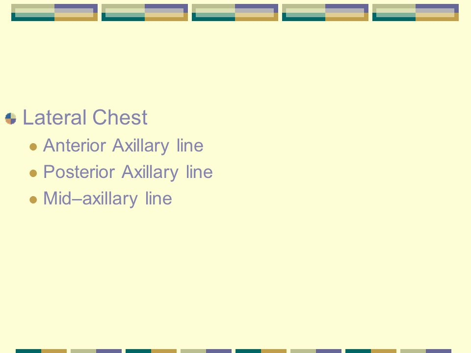 Lateral Chest Anterior Axillary line Posterior Axillary line Mid–axillary line