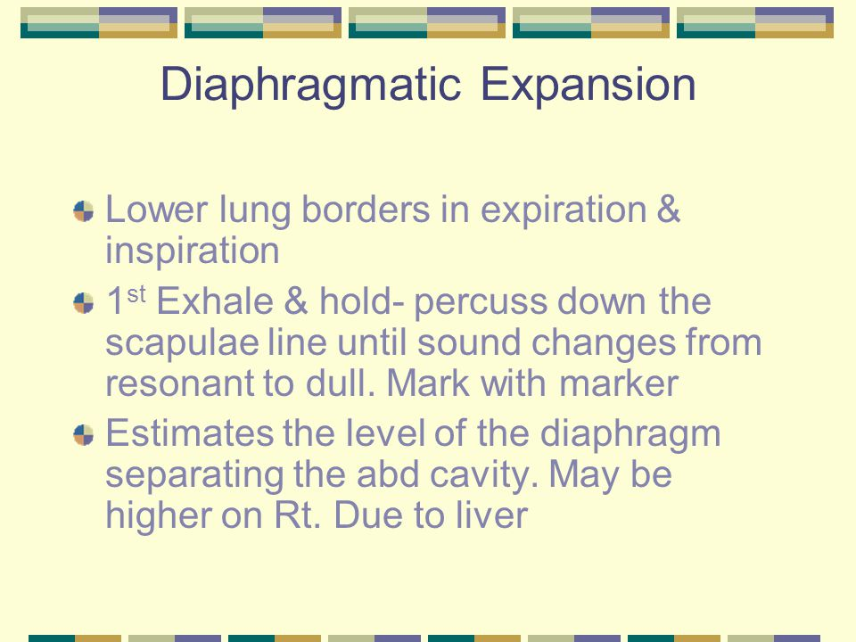 Diaphragmatic Expansion Lower lung borders in expiration & inspiration 1 st Exhale & hold- percuss down the scapulae line until sound changes from res