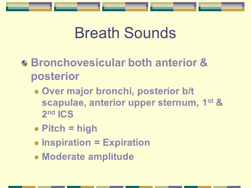 Breath Sounds Bronchovesicular both anterior & posterior Over major bronchi, posterior b/t scapulae, anterior upper sternum, 1 st & 2 nd ICS Pitch = high Inspiration = Expiration Moderate amplitude