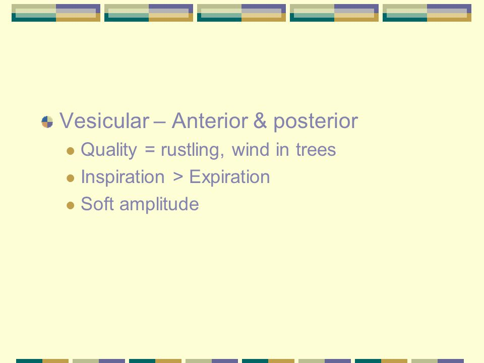 Vesicular – Anterior & posterior Quality = rustling, wind in trees Inspiration > Expiration Soft amplitude