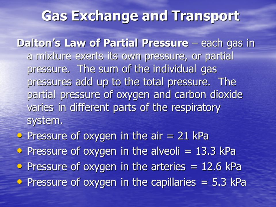 Transport of Gases in the Blood Transport of Gases in the Blood oxygen is only slightly soluble in the blood (0.3mL / 100 mL), so it must be bound to hemoglobin to be transported in the blood.