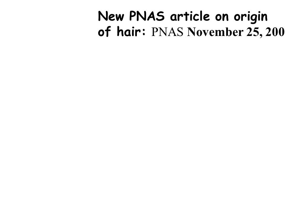 New PNAS article on origin of hair: PNAS November 25, 2008 vol. 105 no. 47 18419-18423