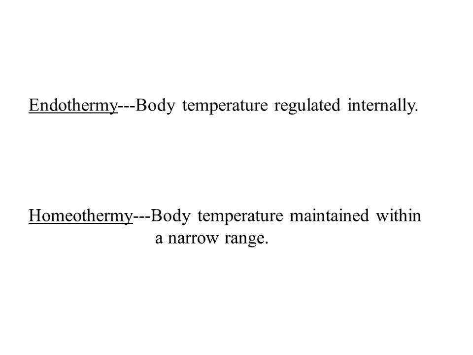 Endothermy---Body temperature regulated internally.