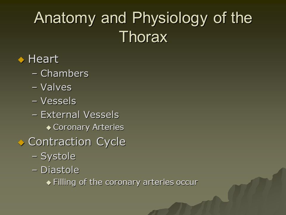 Anatomy and Physiology of the Thorax  Heart –Chambers –Valves –Vessels –External Vessels  Coronary Arteries  Contraction Cycle –Systole –Diastole 