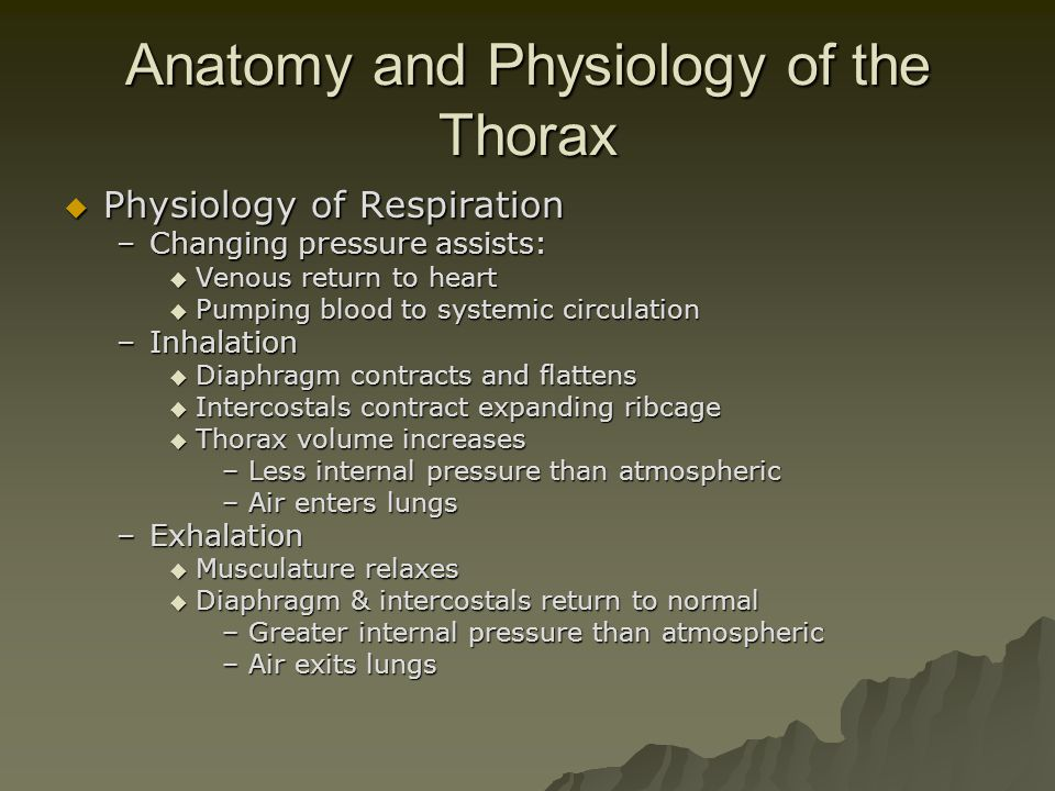 Anatomy and Physiology of the Thorax  Physiology of Respiration –Changing pressure assists:  Venous return to heart  Pumping blood to systemic circ