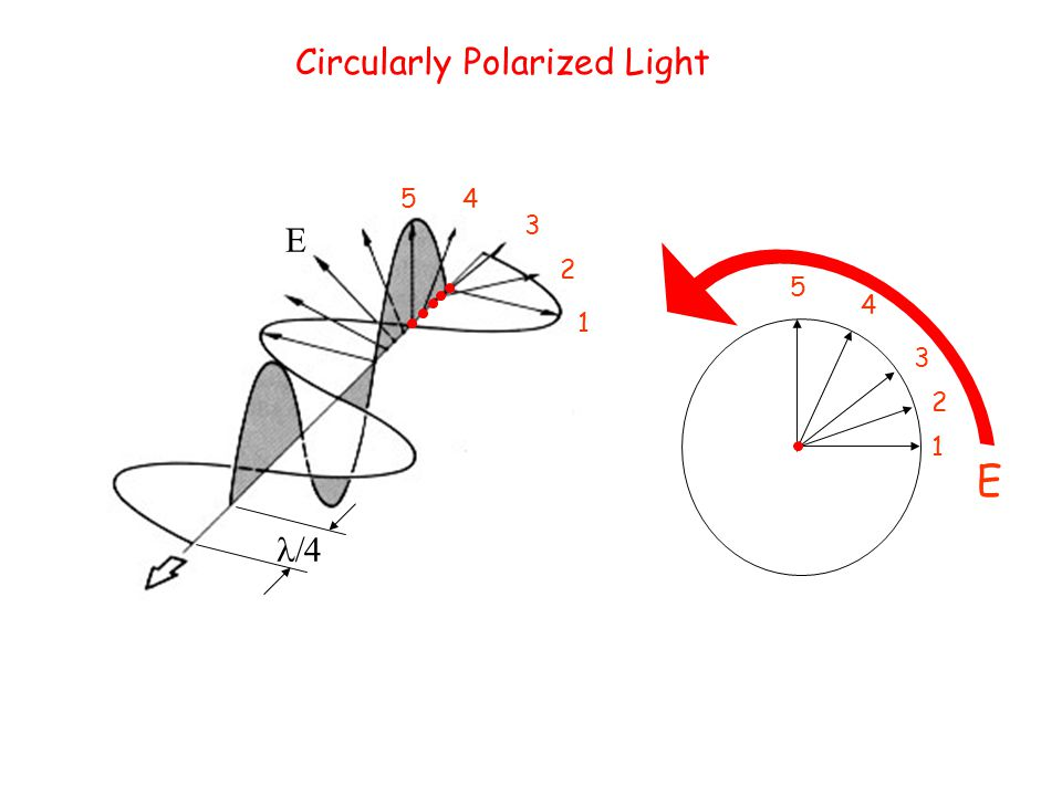 x z EyEy ExEx EE  Circularly Polarized Light 1 1 2 2 3 3 4 4 5 5 E