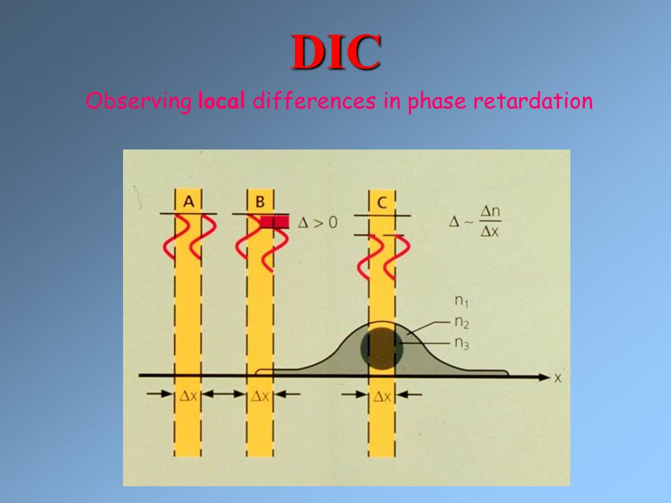 DIC Observing local differences in phase retardation