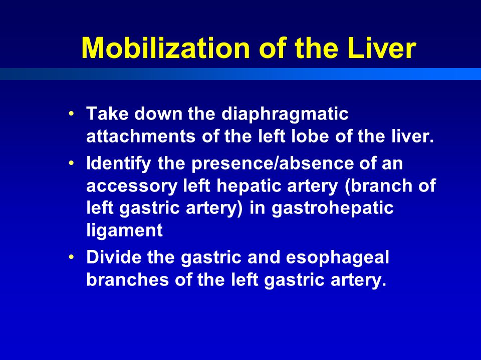 Mobilization of the Liver Take down the diaphragmatic attachments of the left lobe of the liver.