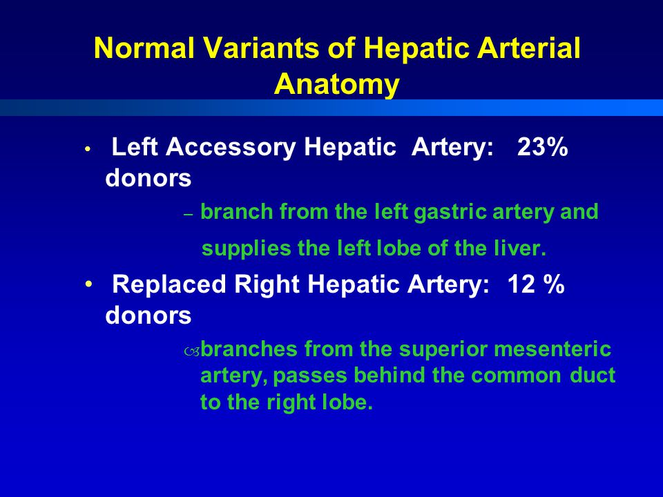 Normal Variants of Hepatic Arterial Anatomy Left Accessory Hepatic Artery: 23% donors – branch from the left gastric artery and supplies the left lobe of the liver.