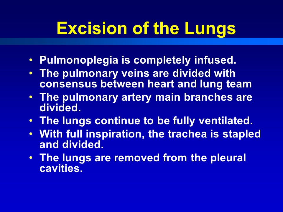 Excision of the Lungs Pulmonoplegia is completely infused.