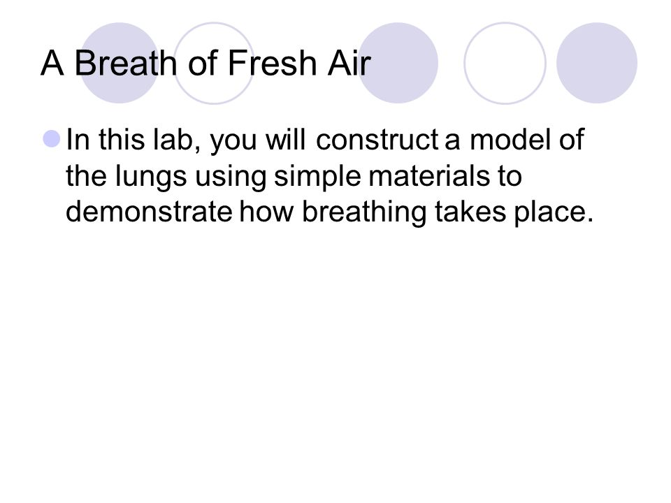 Problem/Scientific Question What causes your body to inhale and exhale air?