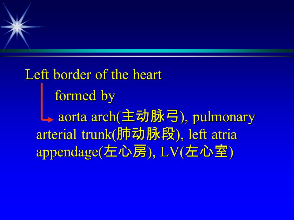 Left border of the heart formed by formed by aorta arch( 主动脉弓 ), pulmonary arterial trunk( 肺动脉段 ), left atria appendage( 左心房 ), LV( 左心室 ) aorta arch(
