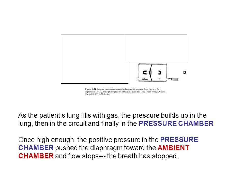 As the patient's lung fills with gas, the pressure builds up in the lung, then in the circuit and finally in the PRESSURE CHAMBER Once high enough, th
