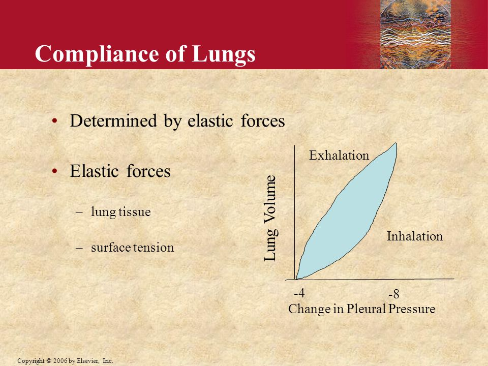 Compliance of Lungs Determined by elastic forces Elastic forces –lung tissue –surface tension Lung Volume Change in Pleural Pressure Inhalation Exhalation -4 -8