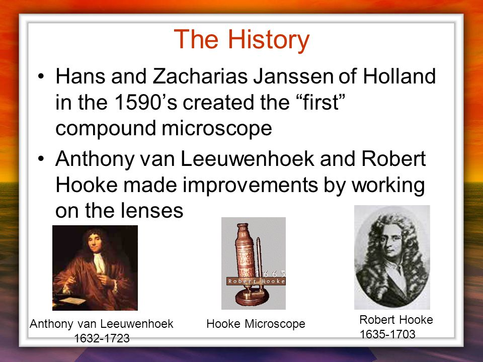 The History Hans and Zacharias Janssen of Holland in the 1590's created the first compound microscope Anthony van Leeuwenhoek and Robert Hooke made improvements by working on the lenses Anthony van Leeuwenhoek 1632-1723 Robert Hooke 1635-1703 Hooke Microscope