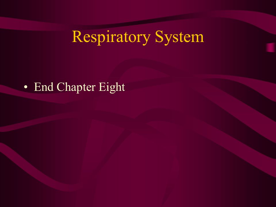 Respiratory System End Chapter Eight