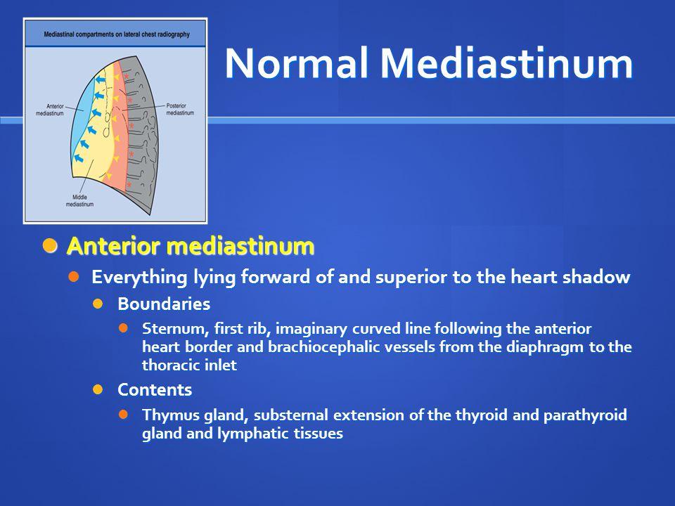 Normal Mediastinum Anterior mediastinum Anterior mediastinum Everything lying forward of and superior to the heart shadow Everything lying forward of