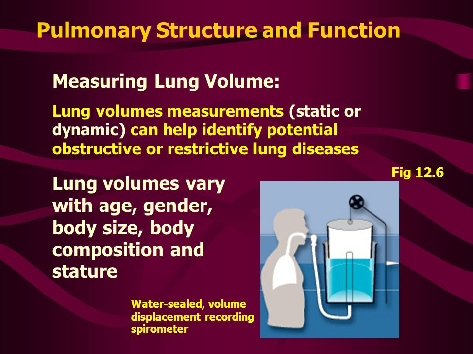 Pulmonary Structure and Function Measuring Lung Volume: Lung volumes measurements (static or dynamic) can help identify potential obstructive or restrictive lung diseases Lung volumes vary with age, gender, body size, body composition and stature Fig 12.6 Water-sealed, volume displacement recording spirometer