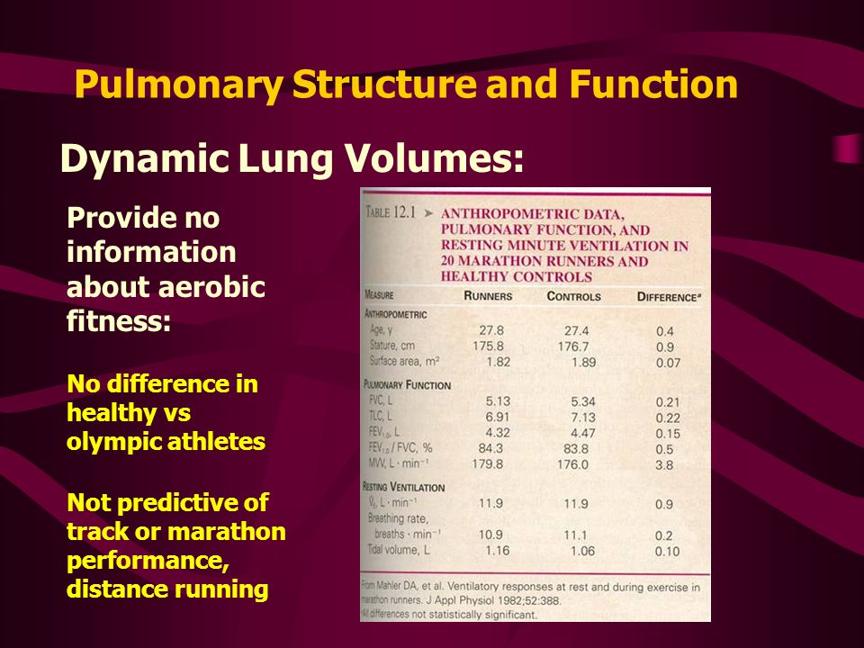 Pulmonary Structure and Function Dynamic Lung Volumes: Provide no information about aerobic fitness: No difference in healthy vs olympic athletes Not predictive of track or marathon performance, distance running