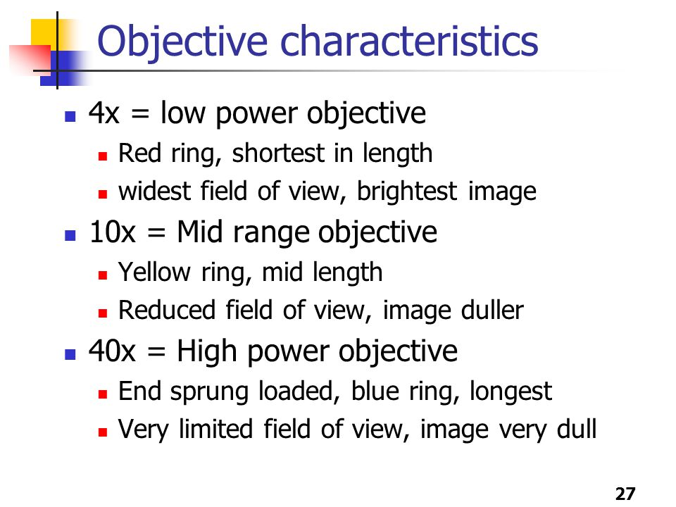 27 Objective characteristics 4x = low power objective Red ring, shortest in length widest field of view, brightest image 10x = Mid range objective Yellow ring, mid length Reduced field of view, image duller 40x = High power objective End sprung loaded, blue ring, longest Very limited field of view, image very dull