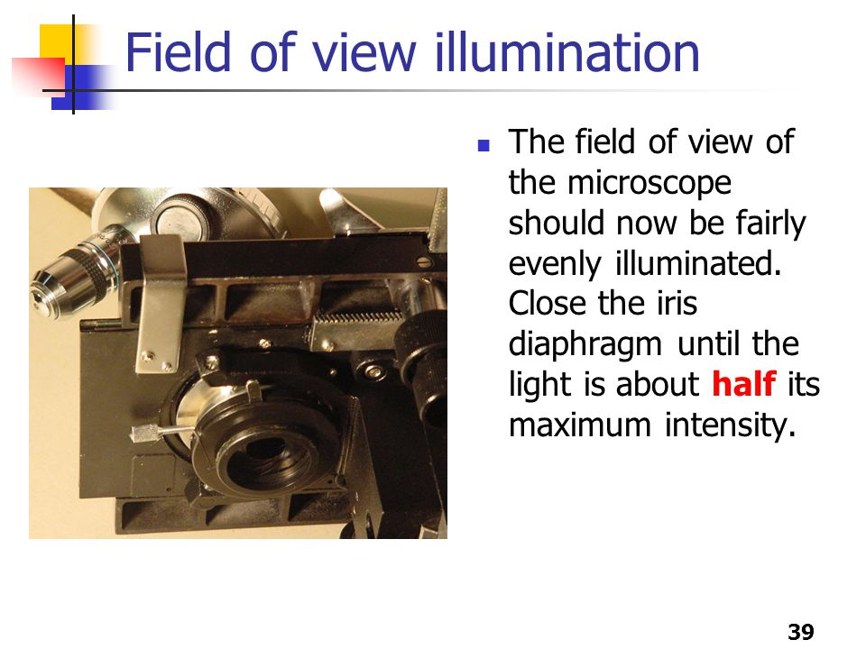 39 Field of view illumination The field of view of the microscope should now be fairly evenly illuminated.