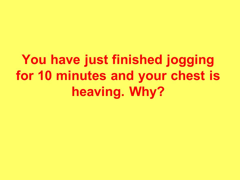 You have just finished jogging for 10 minutes and your chest is heaving. Why?