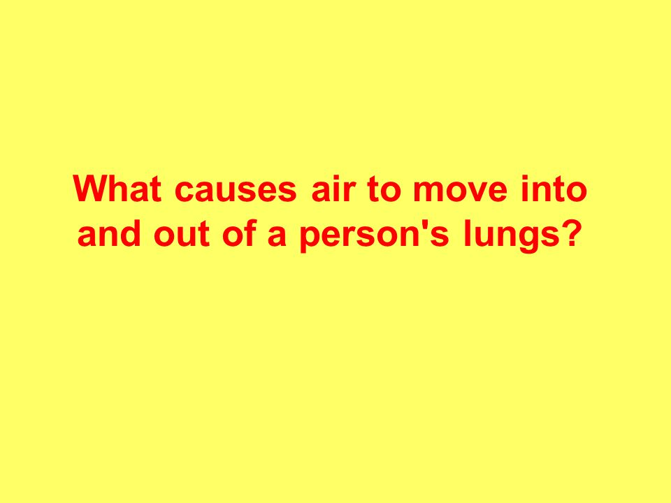 What causes air to move into and out of a person s lungs?
