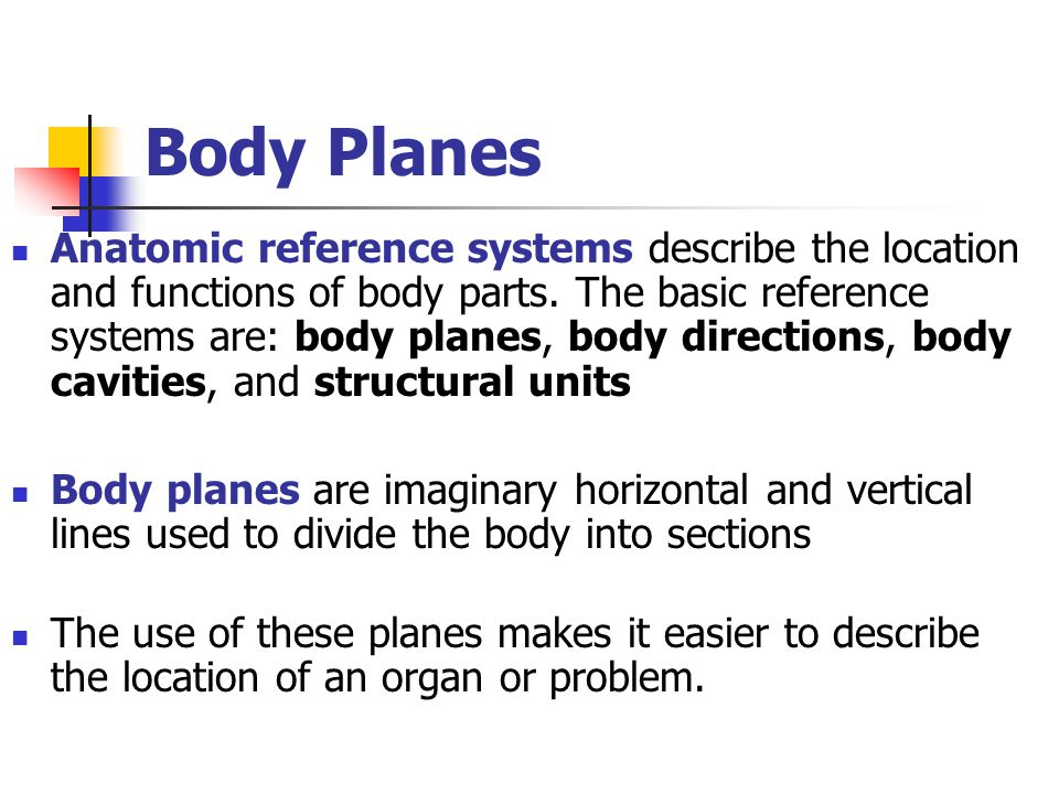 Body Planes Anatomic reference systems describe the location and functions of body parts. The basic reference systems are: body planes, body direction