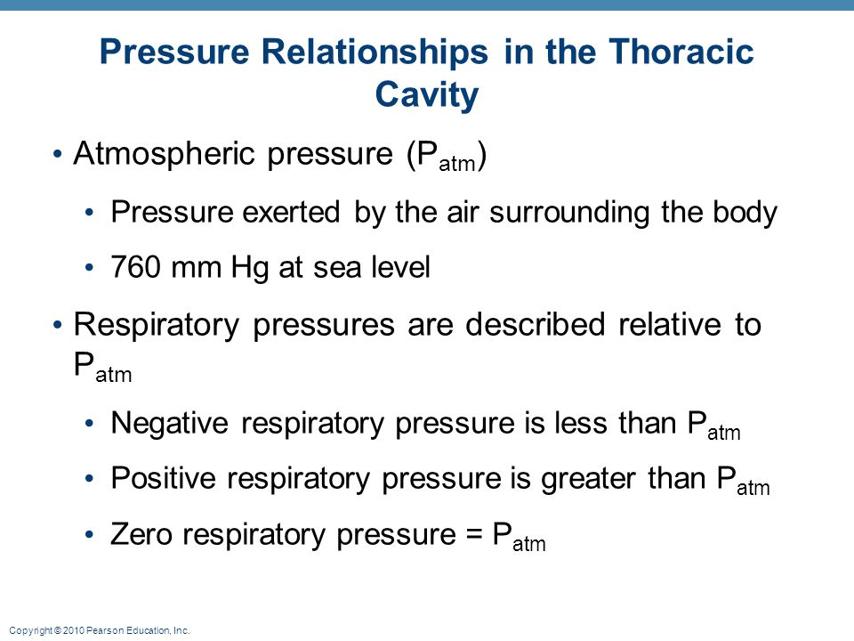 Copyright © 2010 Pearson Education, Inc. Pressure Relationships in the Thoracic Cavity Atmospheric pressure (P atm ) Pressure exerted by the air surro