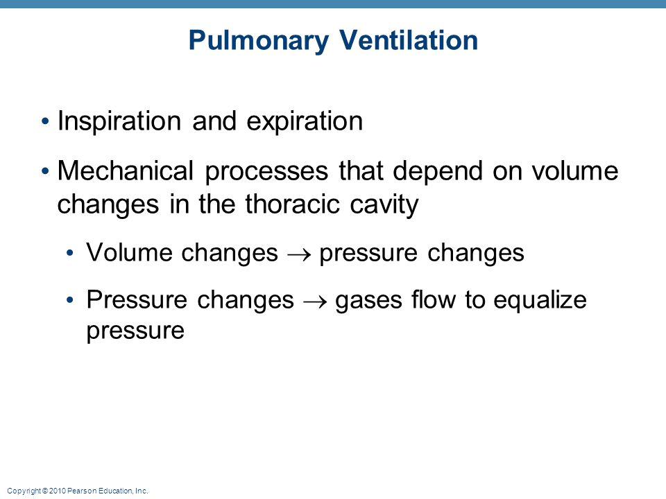 Copyright © 2010 Pearson Education, Inc. Pulmonary Ventilation Inspiration and expiration Mechanical processes that depend on volume changes in the th