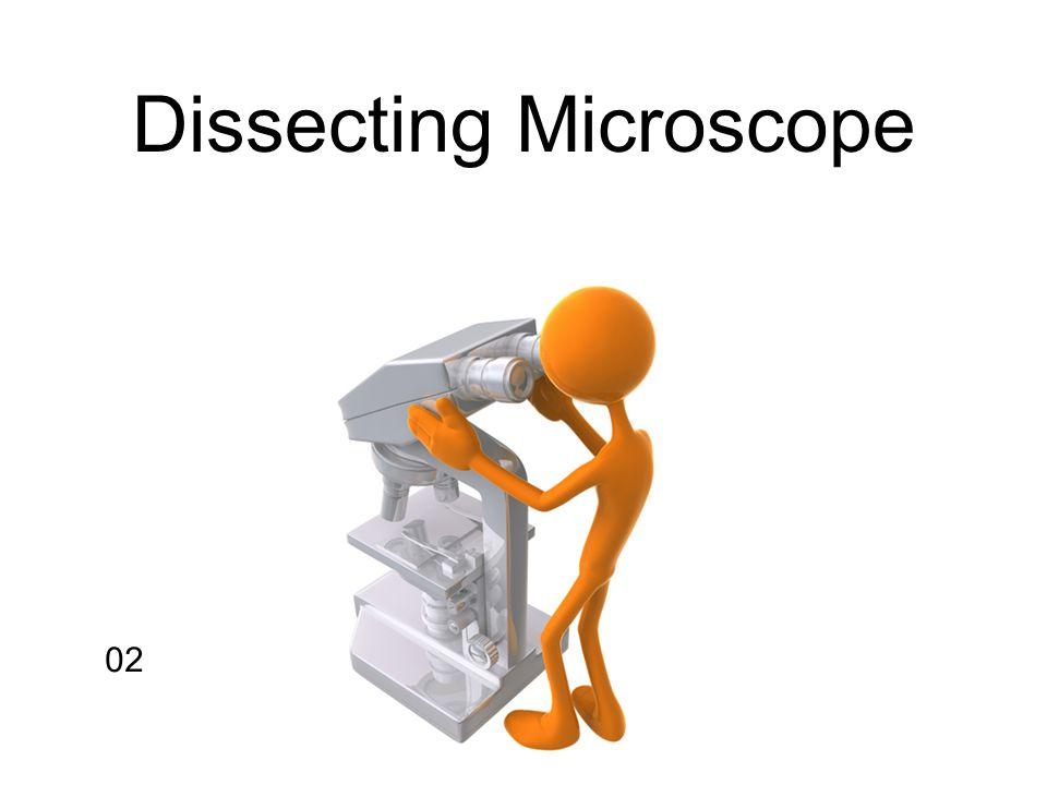 02 Dissecting Microscope