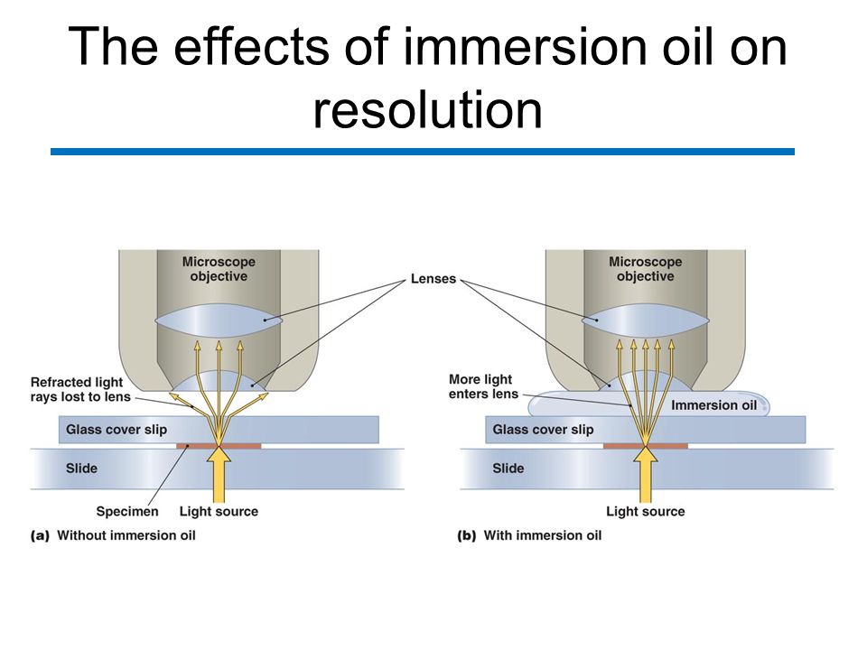 The effects of immersion oil on resolution