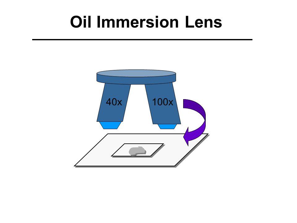 40x 100x Oil Immersion Lens