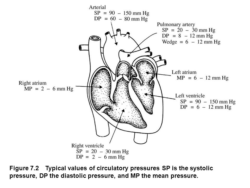 Figure 7.21 Ultrasonic determination of blood pressure A compression cuff is placed over the transmitting (8 MHz) and receiving (8 MHz ±  f) crystals.