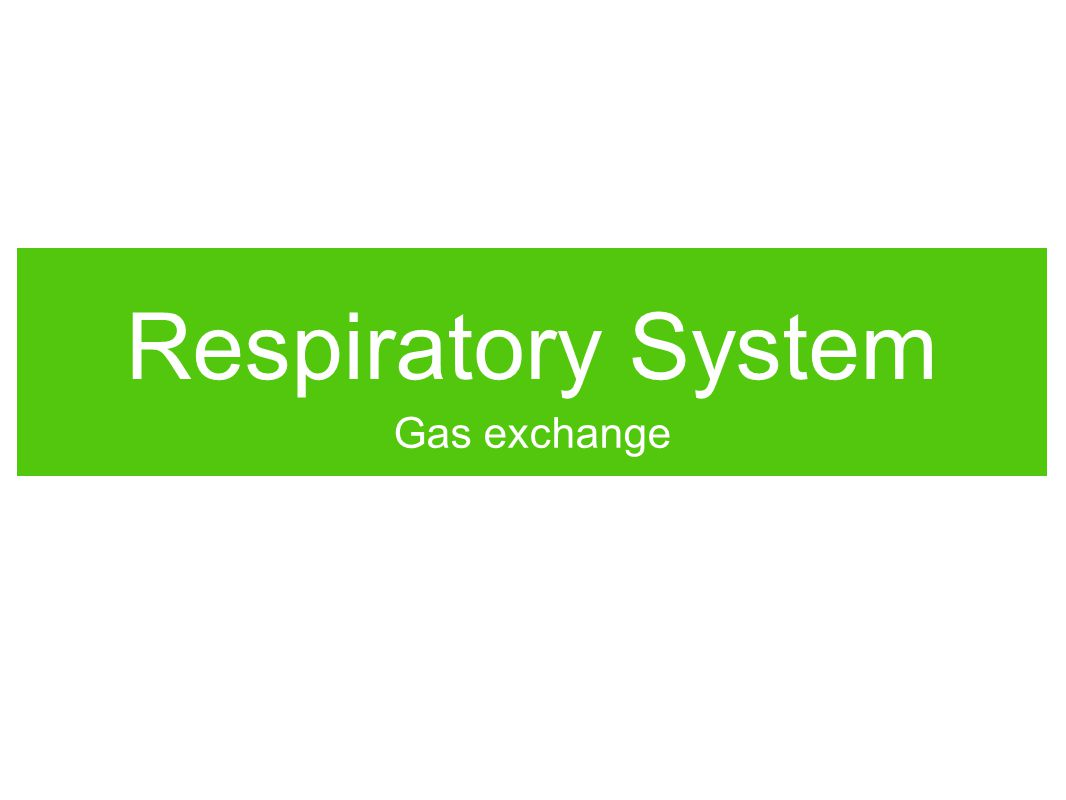 Why do we breathe.Think of all the reasons why we need a respiratory system.