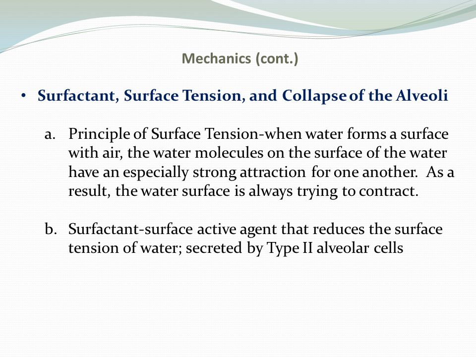 Mechanics (cont.) Surfactant, Surface Tension, and Collapse of the Alveoli a.Principle of Surface Tension-when water forms a surface with air, the water molecules on the surface of the water have an especially strong attraction for one another.