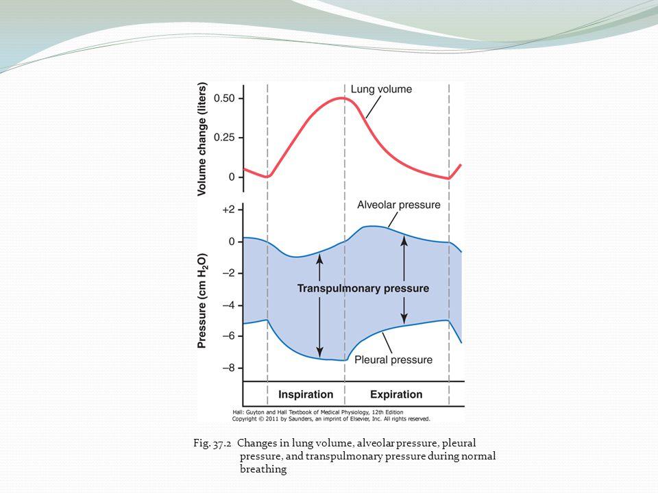 Fig. 37.2 Changes in lung volume, alveolar pressure, pleural pressure, and transpulmonary pressure during normal breathing